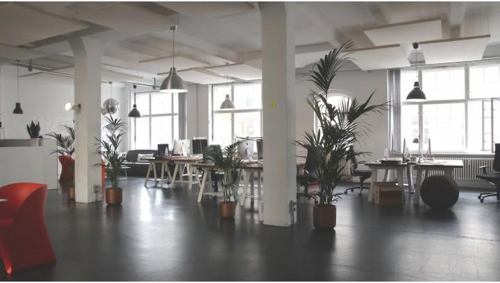Urządzenia i środki czystości niezbędne dla każdej firmy sprzątającej